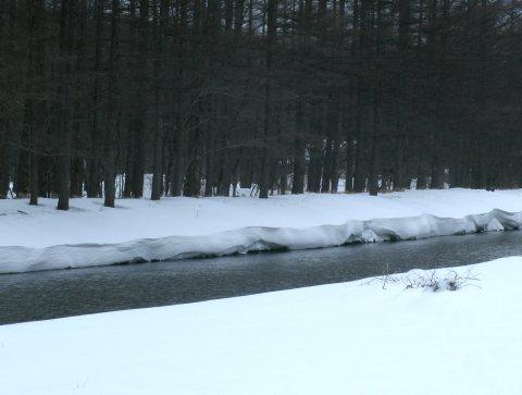 梓川沿いの雪庇